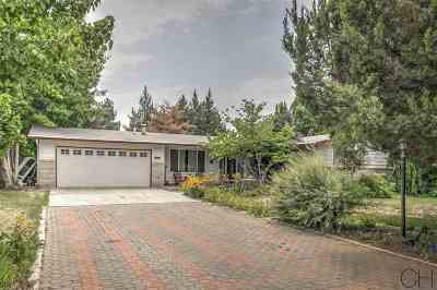 Boise Single Family Home For Sale: 10975 W Netherland
