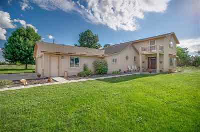 Meridian Single Family Home For Sale: 4035 W Lamont Rd.