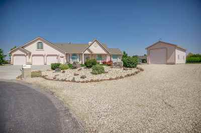 Boise Single Family Home For Sale: 6684 S Gooseberry