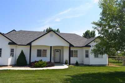 Middleton Single Family Home For Sale: 26298 Rebel Ln