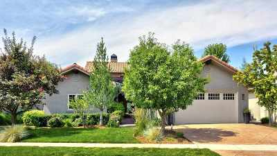 Boise Single Family Home For Sale: 3117 S Temperance Way
