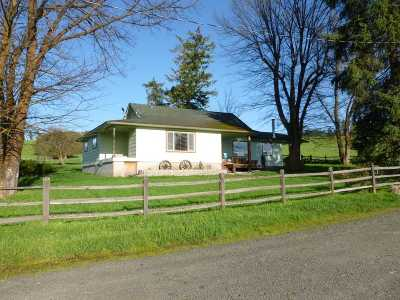 Single Family Home For Sale: 1101 Ruby Creek Rd