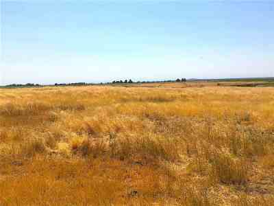 Residential Lots & Land New: 520 E Lot 5