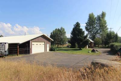 McCall Single Family Home For Sale: 375 S Samson Trail