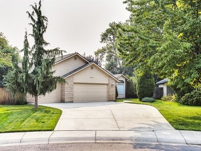 Eagle Single Family Home For Sale: 733 W Aikens Ct