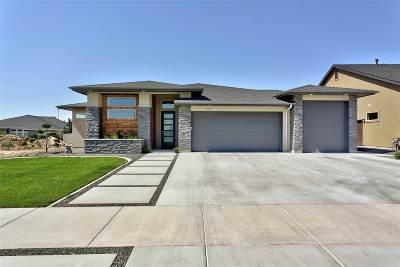 Meridian Single Family Home For Sale: 672 W Buroak Dr