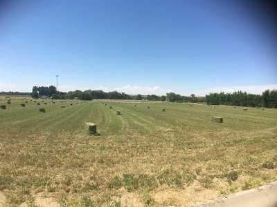 Payette Farm & Ranch For Sale: Iowa Ave
