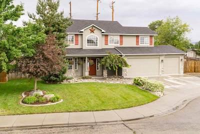 Meridian Single Family Home For Sale: 3150 N Blue Springs