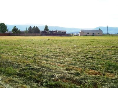 New Meadows ID Residential Lots & Land For Sale: $62,900