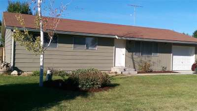Owyhee County Single Family Home For Sale: 719 Marion Drive