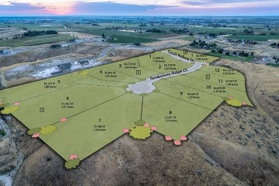 Middleton Residential Lots & Land For Sale: 24353 Tombstone Ridge Ct.