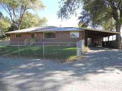 Shoshone Single Family Home For Sale: 619 S Apple Street
