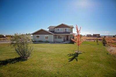 Jerome Single Family Home For Sale: 595 Pioneer Mountain Loop