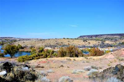 Buhl ID Residential Lots & Land For Sale: $199,000