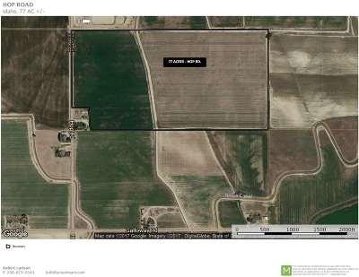 Caldwell Farm & Ranch For Sale: Hop Rd.