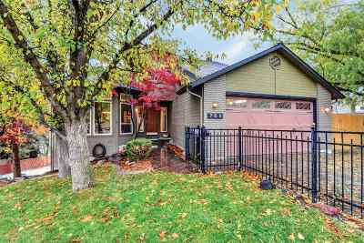 Boise Single Family Home For Sale: 709 N Troutner Way