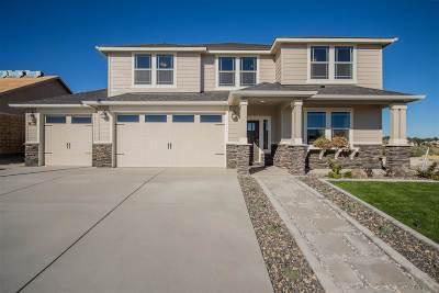 Painted Ridge (Boise) Single Family Home New: 8015 S Topaz Ridge Ave