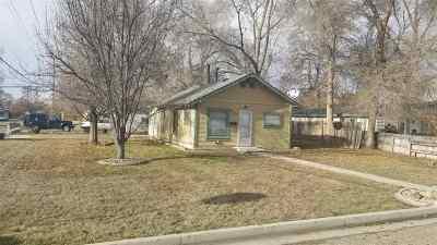 Single Family Home For Sale: 223 S Diamond St