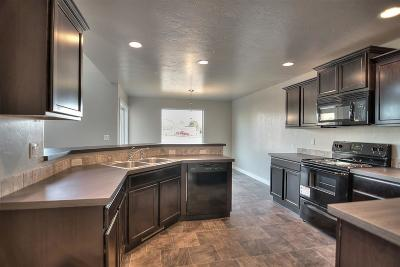 Middleton Single Family Home For Sale: 1613 Placerville St.
