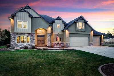 Eagle Single Family Home For Sale: 77 N Salina Ave