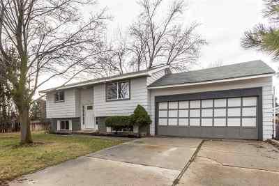 Boise Single Family Home For Sale: 1613 S Ash Park Lane