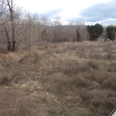 Garden City Residential Lots & Land For Sale: 517 E Remington