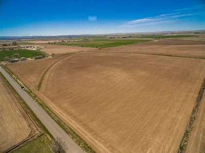 Buhl ID Farm & Ranch For Sale: $910,000