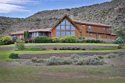 Single Family Home For Sale: 248 Mark Twain Drive