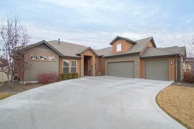 Boise, Eagle, Meridian Single Family Home Price Change: 3860 E Brentor St