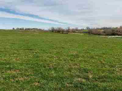 Buhl ID Residential Lots & Land For Sale: $870,000