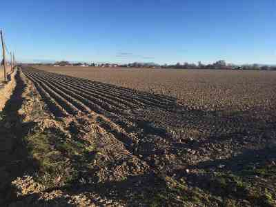 Caldwell Residential Lots & Land For Sale: Farmway Road