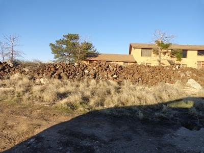 Kuna Farm & Ranch For Sale: 16000 S Cole Road
