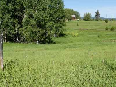 McCall ID Residential Lots & Land For Sale: $39,900