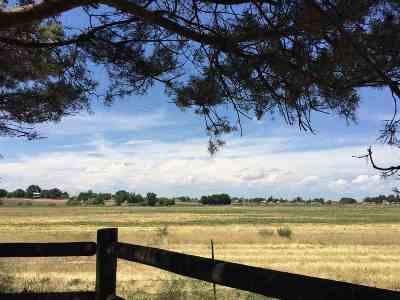 Middleton Single Family Home For Sale: Kimpton Drive
