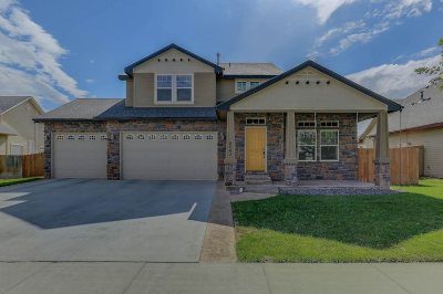 Boise Single Family Home For Sale: 8043 S Diego Way