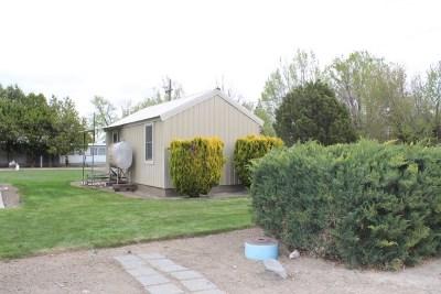 Owyhee County Single Family Home New: 402 W Owyhee Ave