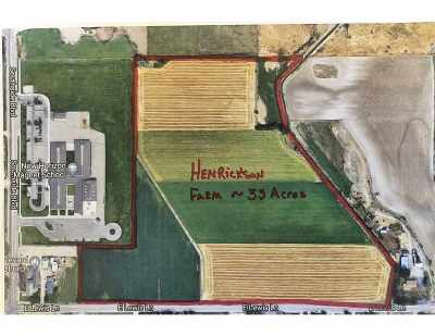 Nampa Farm & Ranch For Sale: 3710 E Lewis Lane