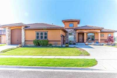 Boise, Nampa, Kuna, Meridian, Eagle, Star Single Family Home For Sale: 1103 W Cherry Bello Dr