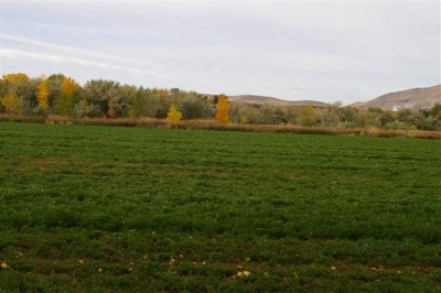 Weiser Residential Lots & Land For Sale: County Road 70