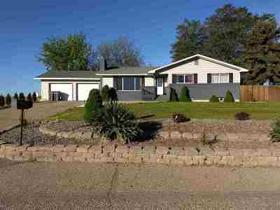 Owyhee County Single Family Home For Sale: 433 Canal Street
