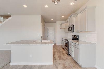 Eagle Single Family Home For Sale: 2466 E Stella Drive