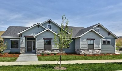Boise Single Family Home For Sale: 4528 E Timbersaw Dr