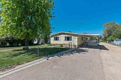 Boise Single Family Home For Sale: 2023 S Penninger Dr.
