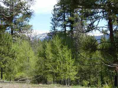 New Meadows ID Residential Lots & Land For Sale: $25,000