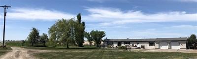 Filer Single Family Home For Sale: 2050 E 4200 N