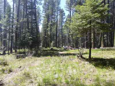 McCall ID Residential Lots & Land For Sale: $129,000