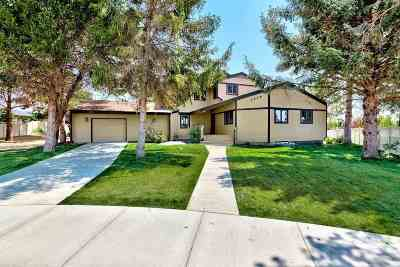 Meridian Single Family Home For Sale: 3475 E Falcon Dr