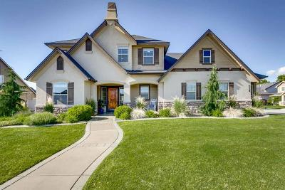 Meridian ID Single Family Home New: $399,000