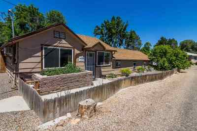 Owyhee County Single Family Home For Sale: 20 Butte Lane