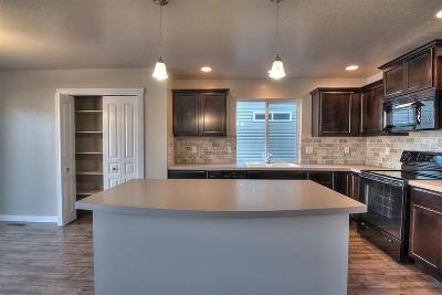 Meridian Single Family Home For Sale: 2670 W Snyder St.